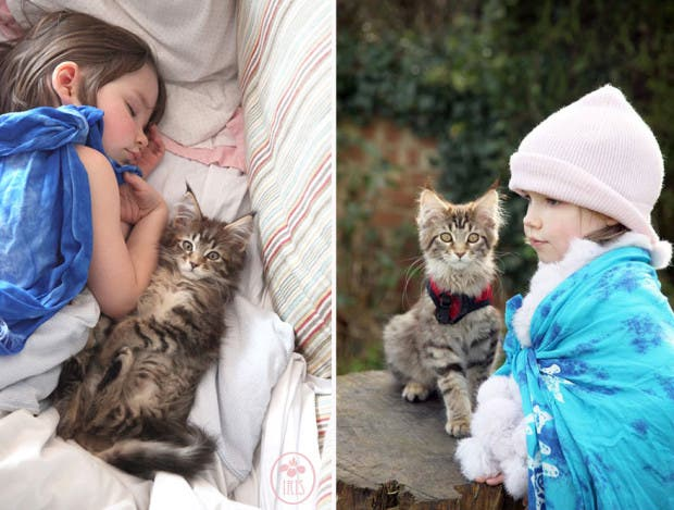 gato terapia17