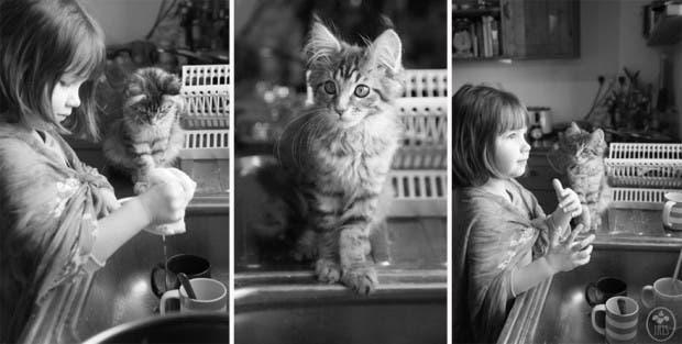 gato terapia9