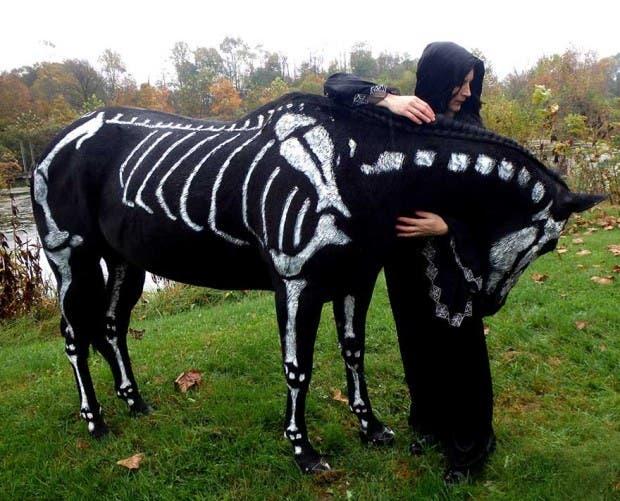 halloween mascotas10