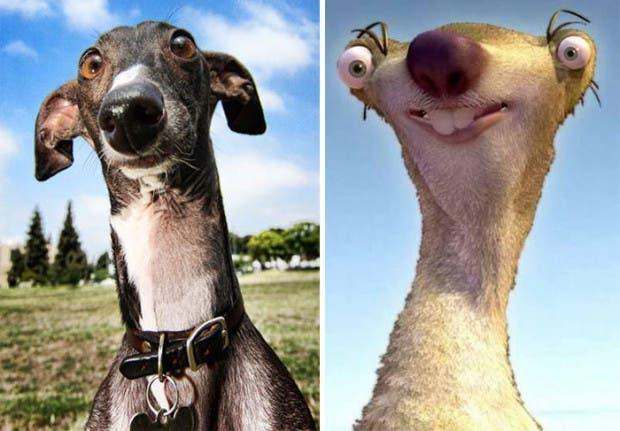 look alike7