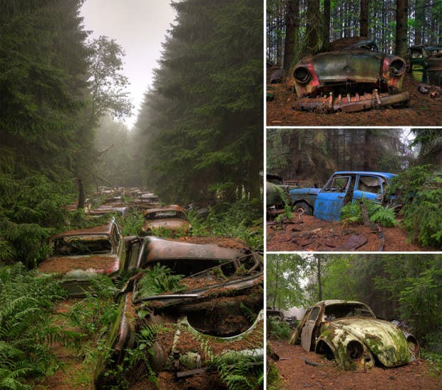 naturaleza vs civilizacion8