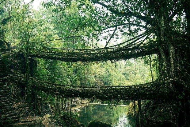 puentes15