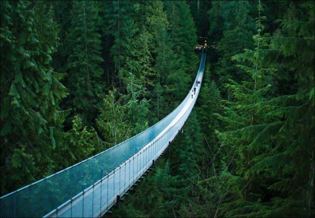 puentes25