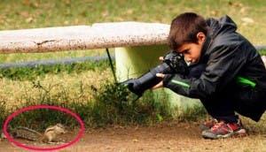 Niño-fotografo