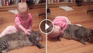 gato-paciente-bebe-play