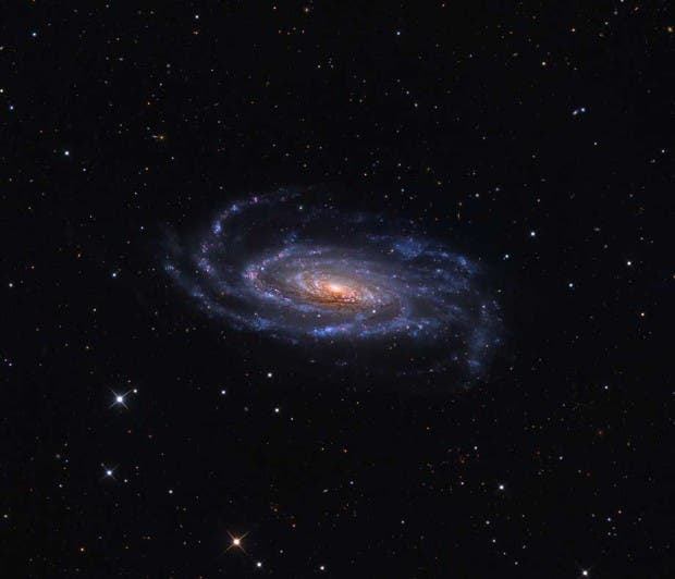 universo18