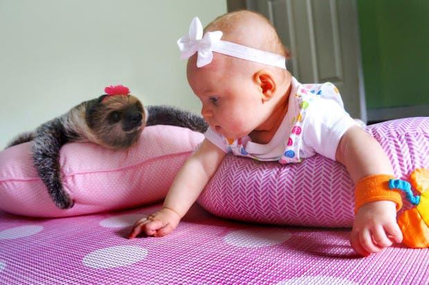 Alia y Daisy2