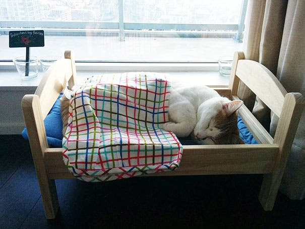 duktig-japanese-cat-bed-ikea-6