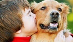 perro-mejor-amigo