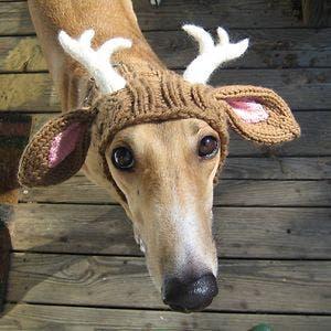 creative-knit-hat-161__300