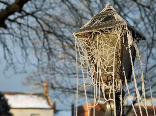 frozen-ice-art-24__880