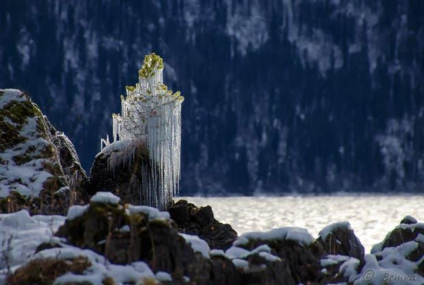 frozen-ice-art-4__880