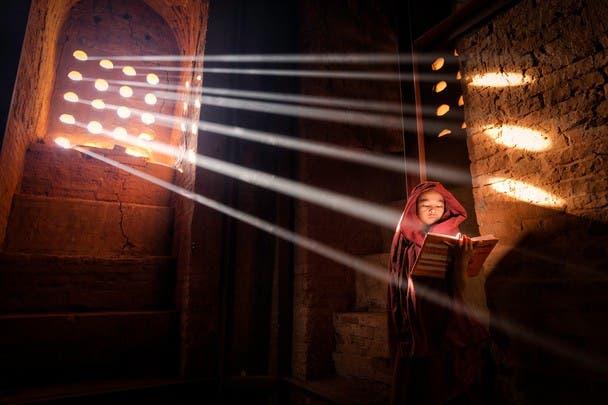 ganadores fotografia natgeo 2014 (4)