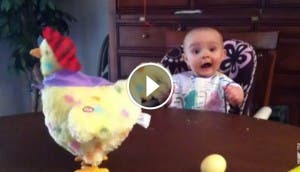 niño-gallina-huevos