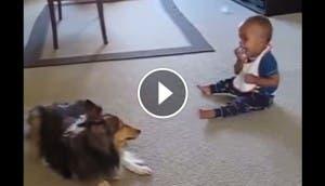 nino-juega-perro-play