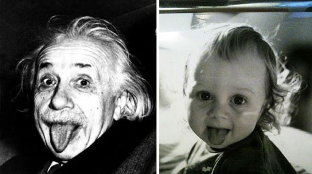 things-look-similar-to-each-other-einstein-baby-selina__700