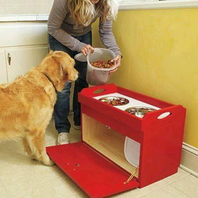 estacioens alimento perro gato (2)