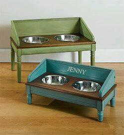 estacioens alimento perro gato (6)