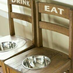estacioens alimento perro gato (7)