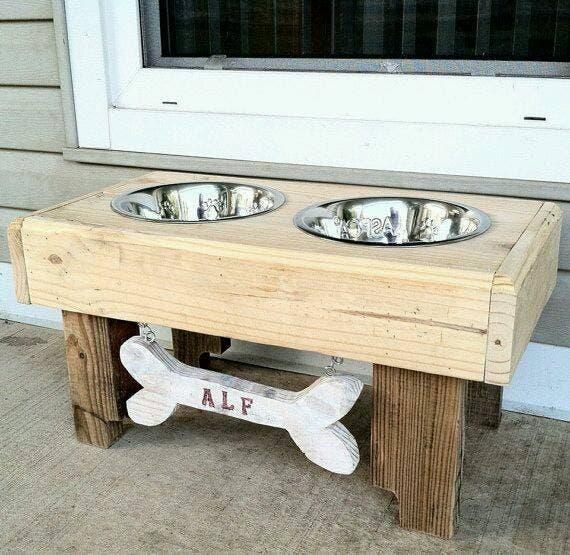 estacioens alimento perro gato (8)