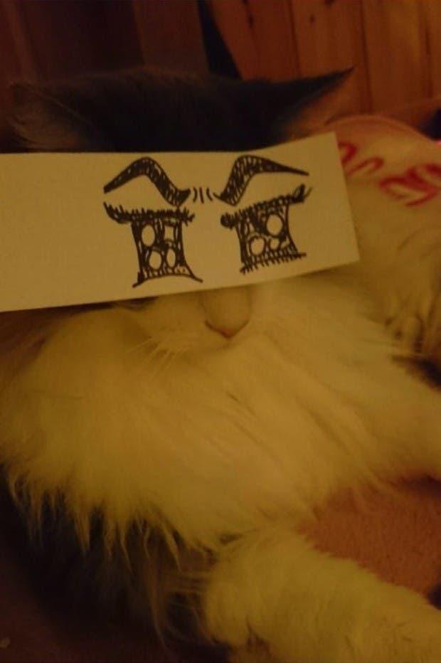 gatos ojos caricatura (11)