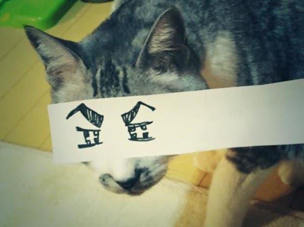 gatos ojos caricatura (9)