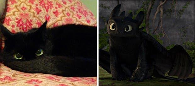 gatos que parecen celebridades (1)