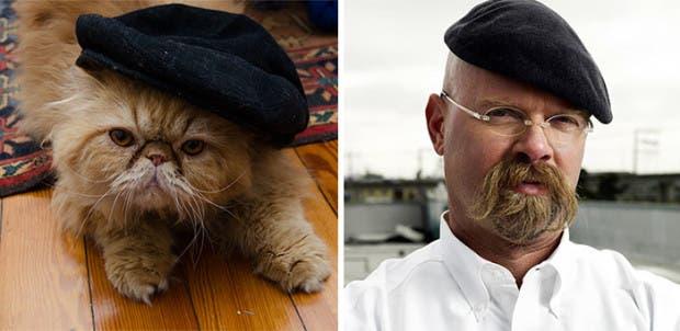 gatos que parecen celebridades (8)