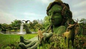 jardin-hermoso