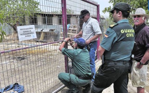 maltrato animal acusado (3)