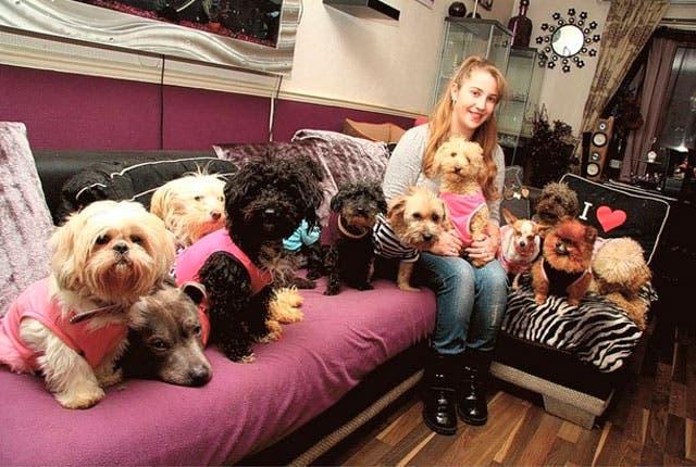 mujer-vive-con-12-perros