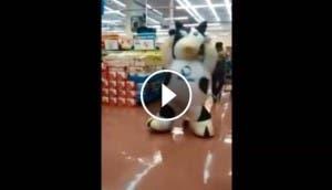 vaca alpura bailando bp