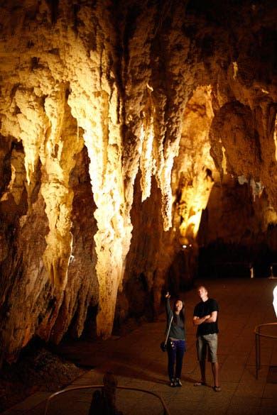 cuevas waitomo (3)