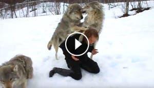 lobos-salvaje-mujer-play
