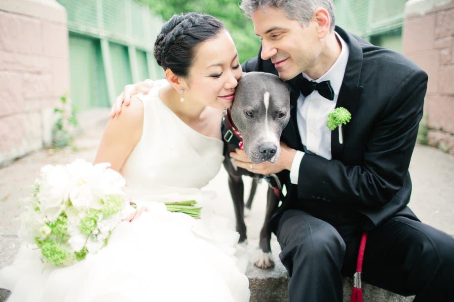 mascotas en las bodas (1)