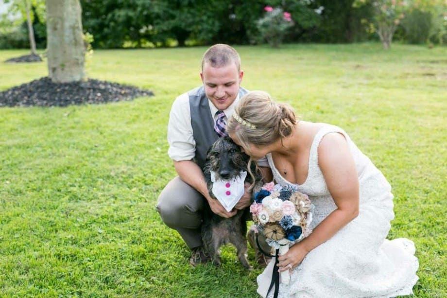 mascotas en las bodas (15)