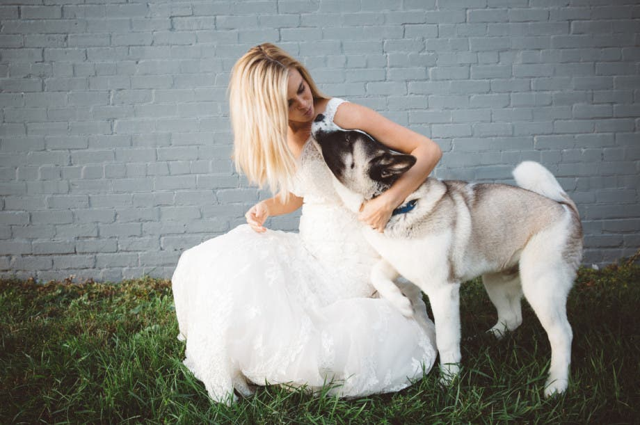 mascotas en las bodas (17)