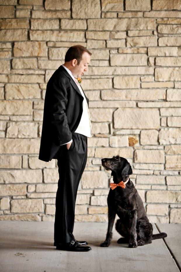 mascotas en las bodas (20)