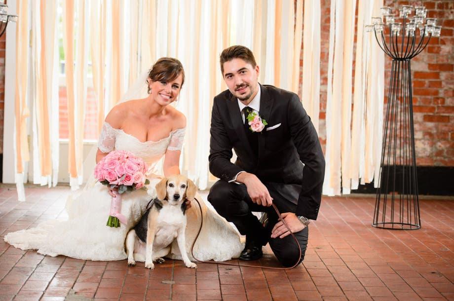 mascotas en las bodas (4)