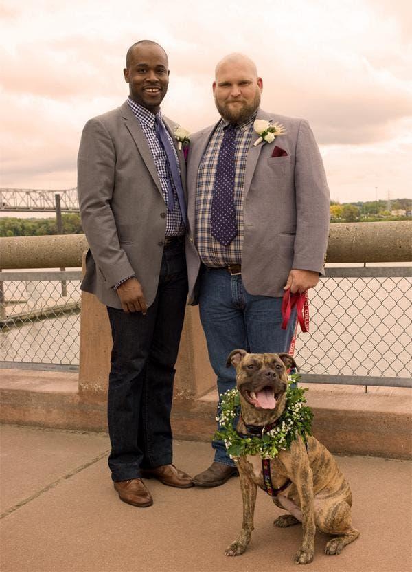 mascotas en las bodas (5)