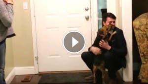 perro-recibe-dueno-play