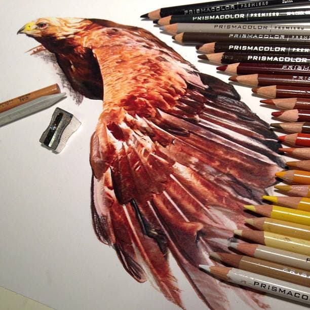 mixed-media-drawings-hyperrealism-karla-mialynne-10