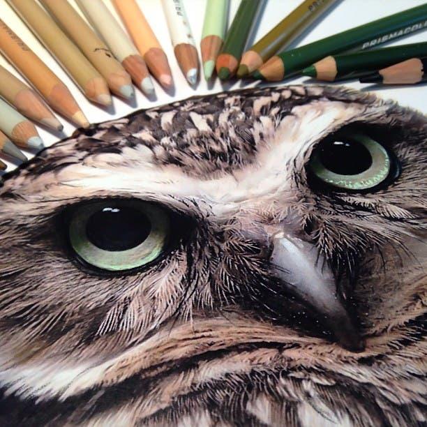 mixed-media-drawings-hyperrealism-karla-mialynne-9