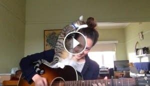 mujer-canta-gato-encima-play