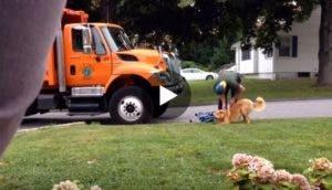 detiene-su-camion-para-saludar-a-perros