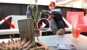 planta-para-cargar-el-telefono-movil