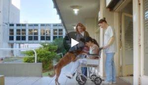 video-para-promover-donacion-de-organos2