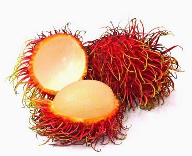 20-of-the-Worlds-Weirdest-Natural-Foods-Fruits-Vegetables5__700