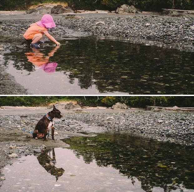 I-Photograph-My-Daughter-And-Dog-In-The-Same-Setting14__880