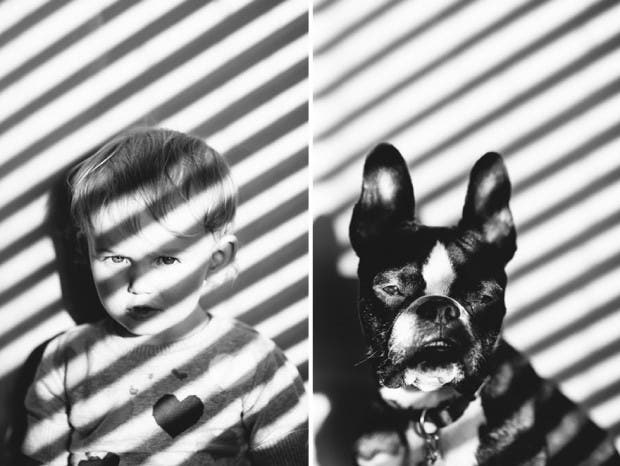 I-Photograph-My-Daughter-And-Dog-In-The-Same-Setting9__880